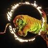 Цирки в Чкаловске